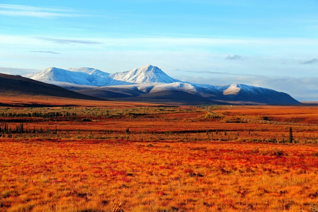 """<p style=""""text-align: left;"""">Tombstone Territorial Park, YT</p><p class=""""lightbox-share""""><span>Share: </span><a class=""""lightbox-fb"""" href=""""javascript:void(0);"""">Facebook</a><a class=""""lightbox-twit"""" href=""""https://twitter.com/home?status=I%20voted%20for%20WINNER!%20Mount%20Vines%20%20in%20the%20Cornice%20Calendar%20Contest.%20Choose%20your%20favourite%206%20photos:%20http://ow.ly/yCSmZ"""" target=""""_blank"""">Twitter</a></p><input type=hidden class=voteid value=1525 />"""