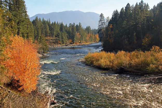 """<p>Adams River, Roderick Haig Brown Provincial Park, BC</p><p class=""""lightbox-share""""><span>Share: </span><a class=""""lightbox-fb"""" href=""""javascript:void(0);"""">Facebook</a><a class=""""lightbox-twit"""" href=""""https://twitter.com/home?status=I%20voted%20for%20Adams%20River%20Fall%20in%20the%20Cornice%20Calendar%20Contest.%20Choose%20your%20favourite%206%20photos:%20http://ow.ly/yCSmZ"""" target=""""_blank"""">Twitter</a></p><input type=hidden class=voteid value=1814 />"""
