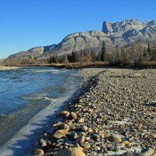 Snake Indian River