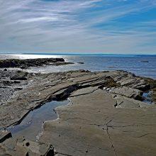 Fundy Reefs