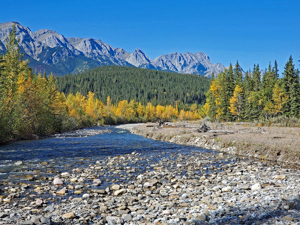 """<p>Moosehorn Creek, Jasper National Park, BC</p><p class=""""lightbox-share""""><span>Share: </span><a class=""""lightbox-fb"""" href=""""javascript:void(0);"""">Facebook</a><a class=""""lightbox-twit"""" href=""""https://twitter.com/home?status=I%20voted%20for%20Meeting%20Place%20in%20the%20Cornice%20Calendar%20Contest.%20Choose%20your%20favourite%206%20photos:%20http://ow.ly/yCSmZ"""" target=""""_blank"""">Twitter</a></p><input type=hidden class=voteid value=2003 />"""